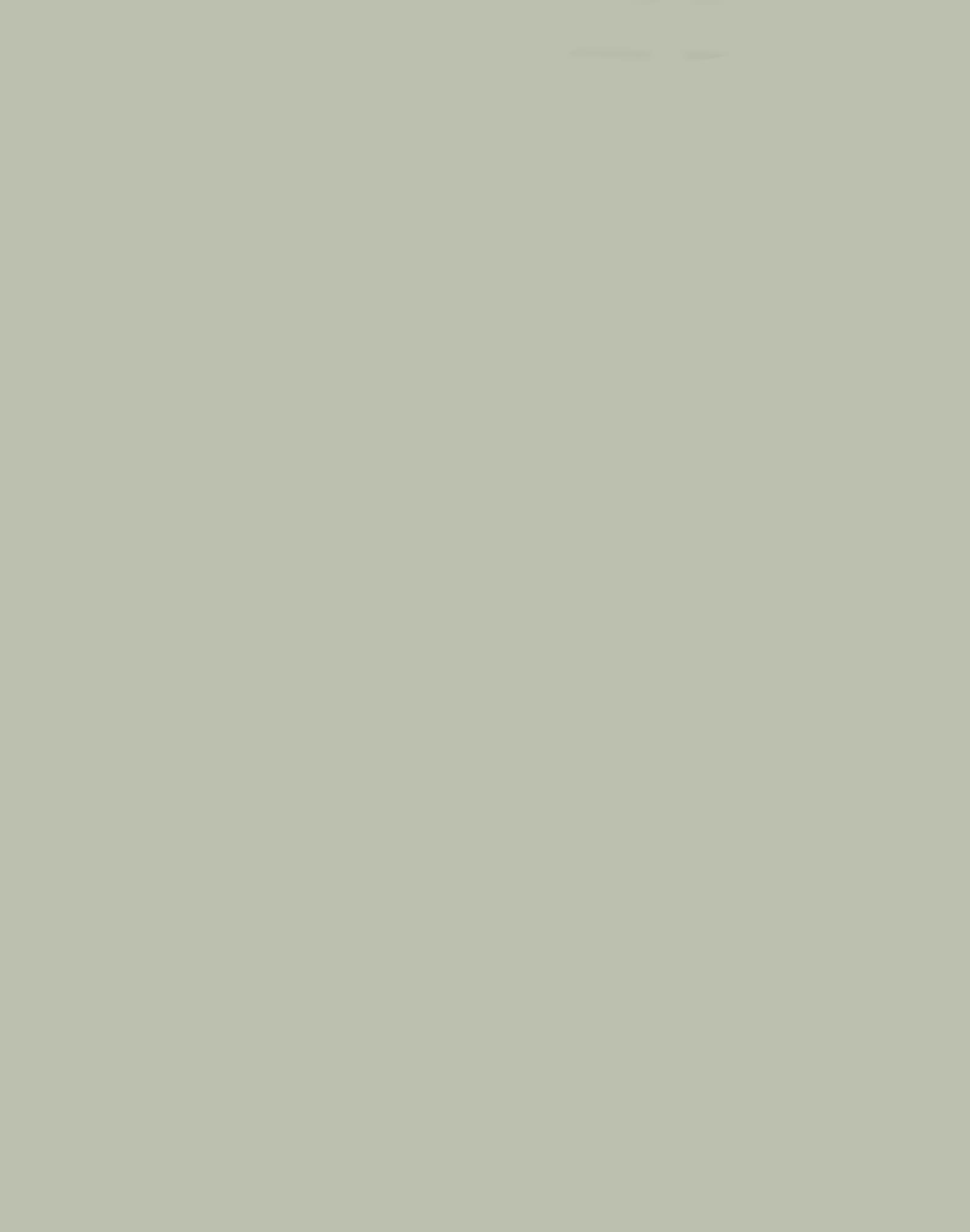 Natural Sage 187,192,175