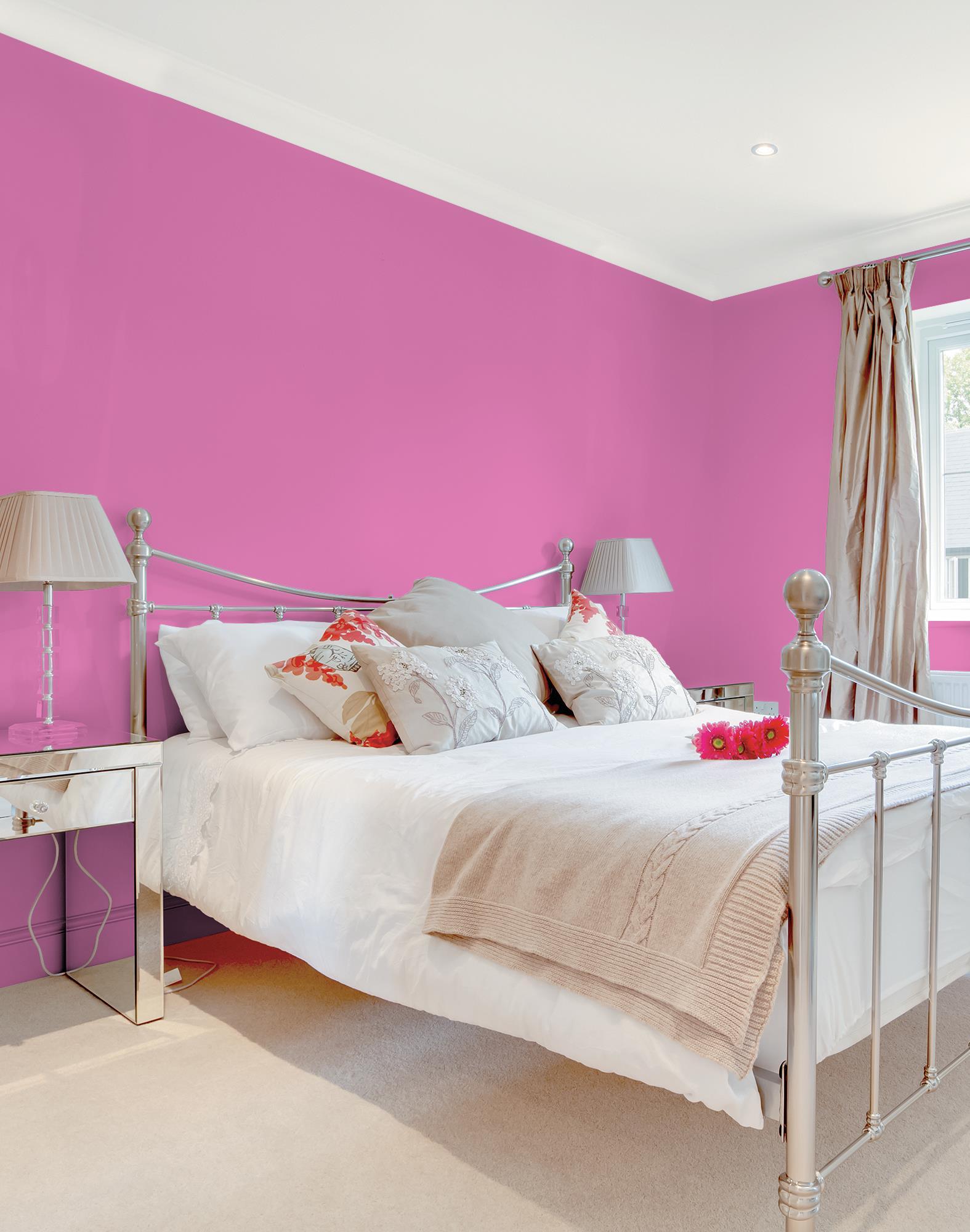 Passion Pink 206,116,167