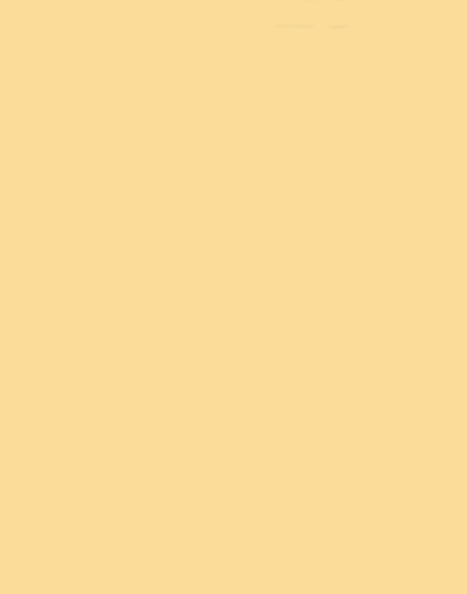 Soft Buttercup 251,220,153