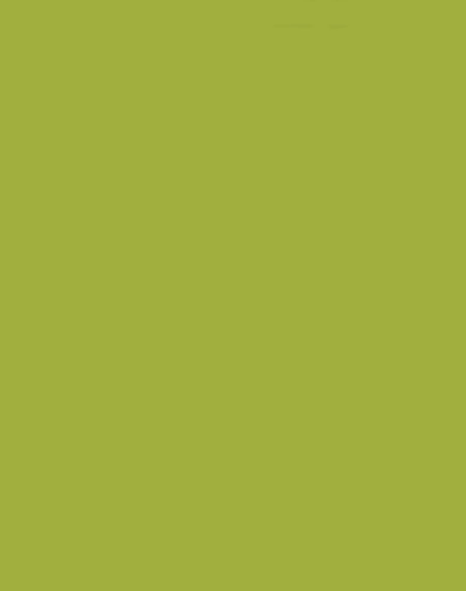 Tropical Jungle 161,175,62